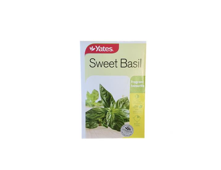 Sweet Basil 1